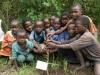 Tree planting, Bwini Impenetrable National Park, Uganda