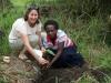 Planting in Kihihi Town