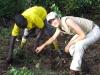 Shui-Lyn planting in Bwindi