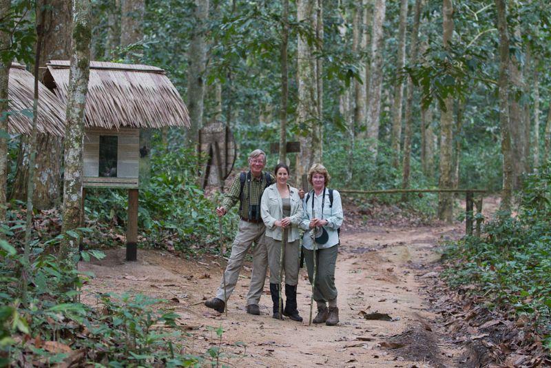 Trekking Western Lowland Gorillas, CAR