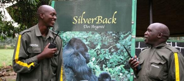 Gorilla briefing, Parc de Volcans, Rwanda