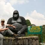 rwanda-volcanoes-nat-park
